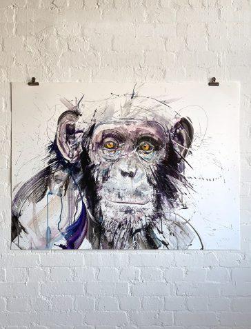 Chimp I XL