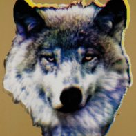 AID05-Aida-Wolf-Gold-Thumbnail