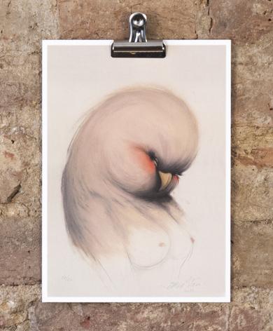 MSV12-Miss-Van-Lady-Bird-Wall-Shot