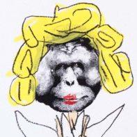 HIN04-Hin-Modern-Ape-Marylin-Thumbnail