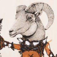 HIN07P-Hin-Original-Goat-Thumbnail