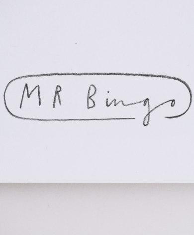 MRB02-Mr-Bingo-New-Hope-Holo-Close-Up2