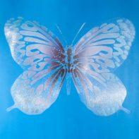 PE71A-Pure-Evil-Butterfly-Canvas-Blue-Thumbnail
