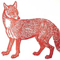 PT07-Patrick-Thomans-Bewicks-Fox-Red-Thumbnail