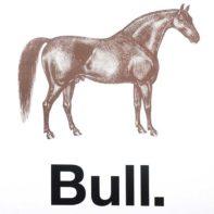 PT66-Patrick-Thomas-Horse-Bull-Thumbnail