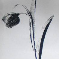 temp_thumbnail-TRACY_KENDALL_floral_9