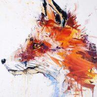 DAW07-Dave-White-Fox-Thumbnail