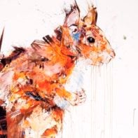 DAW08-Dave-White-Squirrel-Temp-Thumbnail