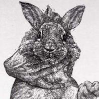 GAI26-Gaia-Hand-Honding-Rabbit-Thumbnail