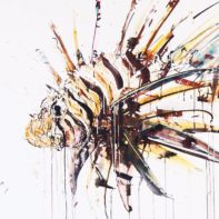 DAW18-Dave-White-Lion-Fish-Thumbnail