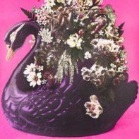 AID28-Aida-The-Swan-Song-Of-Leda-Purple-Pink-Thumbnail