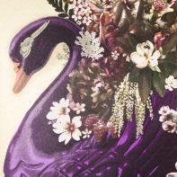 AID28-Aida-The-Swan-Song-Of-Leda-Thumbnail