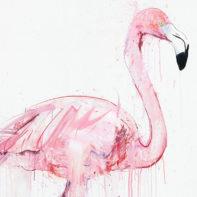 DW33-Dave-White-Flamingo-I-Thumbnail