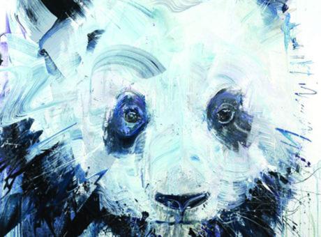 Dave White critical panda