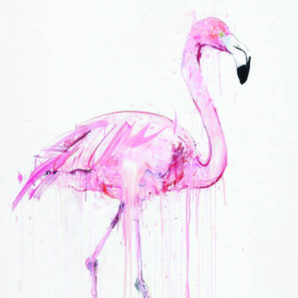 dave white critical flamingo