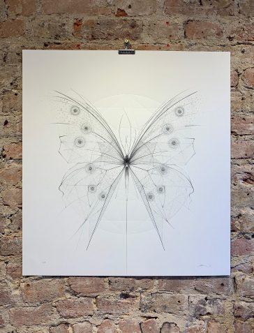Morpho Butterfly – Clear Geometry