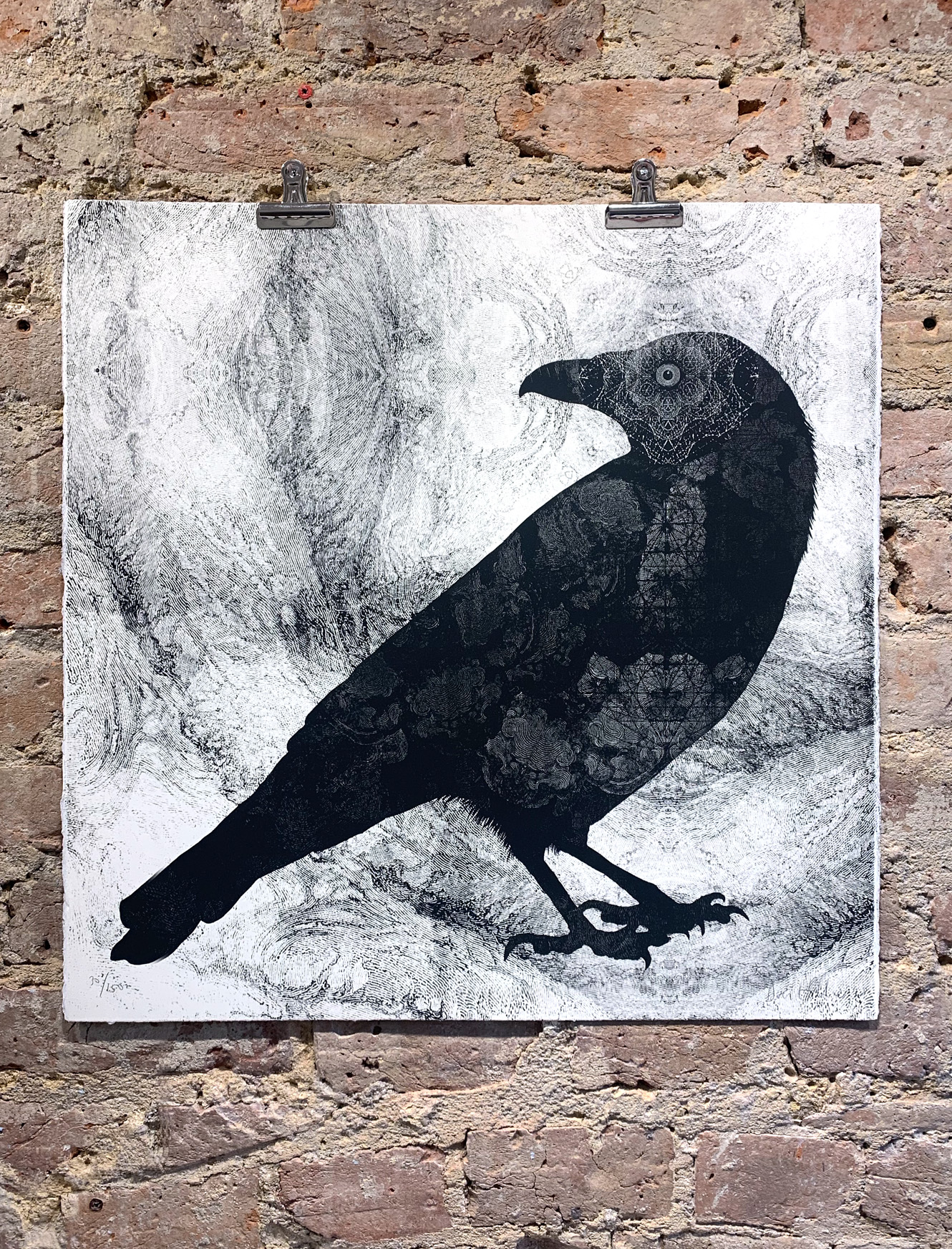 Raven By Dan Hillier Nelly Duff