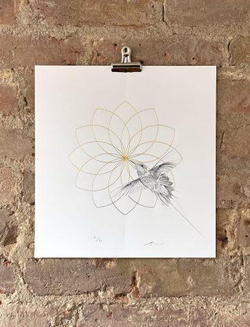 Hummingbird - Gold Petals