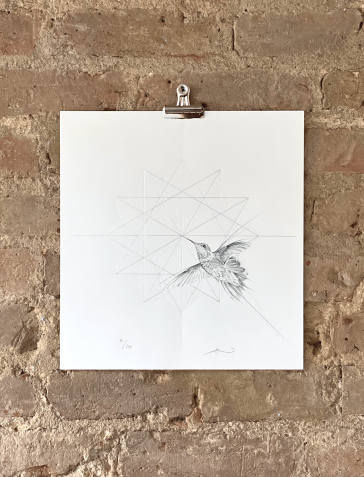 Hummingbird - Silver