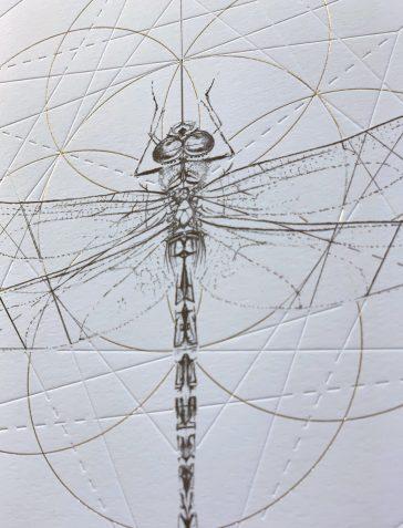 Emperor Dragonfly Prism [Gold & Clear Foil]