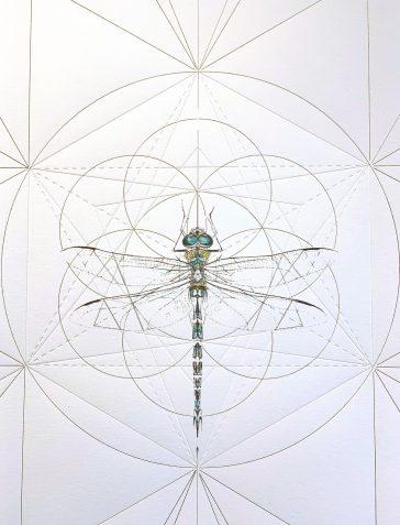 Emperor Dragonfly Prism - Hand Embellished