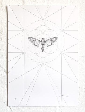 Death's Head Moth Prism [Silver & Clear Foil]