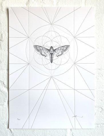 Death's Head Moth Prism [Gold & Clear Foil]