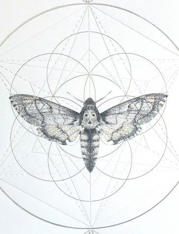 Death's Head Moth Prism [Hand Embellished]