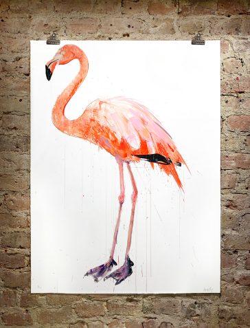 Flamingo I - 2019 [Standard]