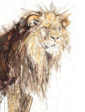 Lion - 2020