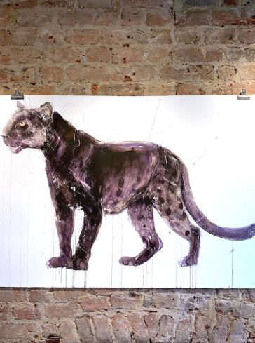 Panther - Standard