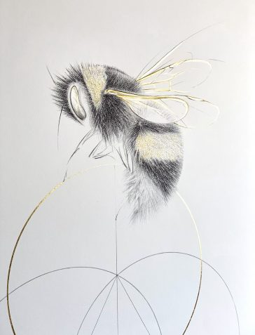 The Bee And The Golden Circle - Hand Finished
